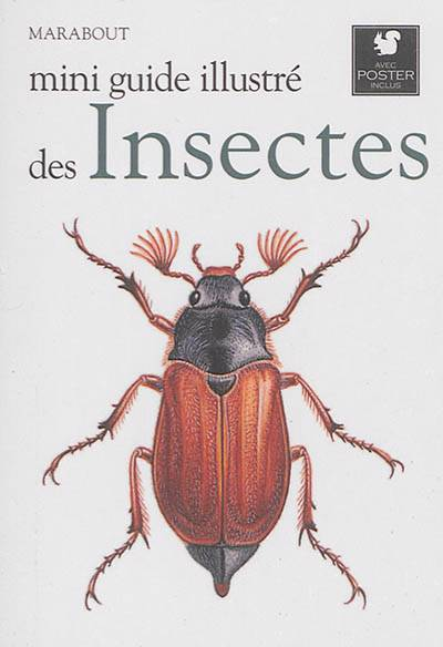 Mini Guide Illustré Des Insectes