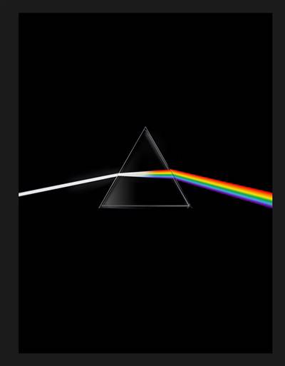 Pink Floyd ; Their Mortal Remains ; Le Livre Officiel
